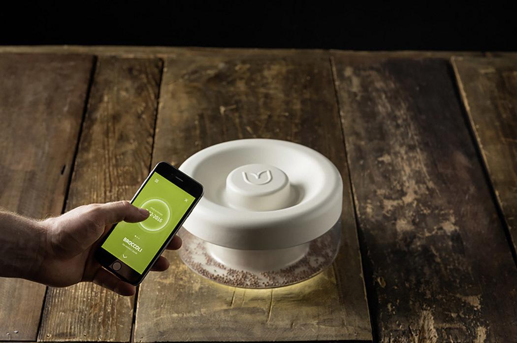 家用智能豆芽机设计